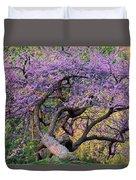 Eastern Redbud Arlington Virginia Spring Bloom Duvet Cover