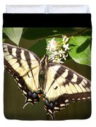 Eastern Tiger Swallowtail  Butterfly Wingspan Duvet Cover