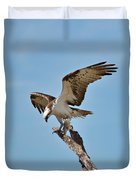 Eating Osprey-1 Duvet Cover by Rudy Umans
