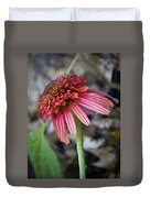 Echinacea Hot Papaya Duvet Cover