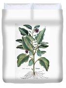 Eggplant, 1735 Duvet Cover