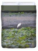 Egret Standing In Lake Duvet Cover