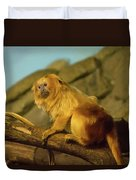 El Paso Zoo - Golden Lion Tamarin Duvet Cover by Allen Sheffield