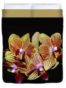 Elegant Orchid On Black Duvet Cover