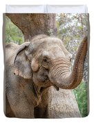 Elephant And Tree Trunk Duvet Cover