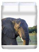 Elephant Close Up Duvet Cover