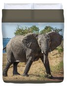 Elephant Crossing Dirt Track Facing Towards Camera Duvet Cover