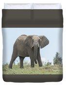 Elephant Forward On Mound Duvet Cover