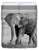Elephant Happy And Free In Black And White Duvet Cover