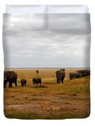 Elephant Herd Duvet Cover