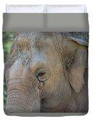 Elephant Duvet Cover