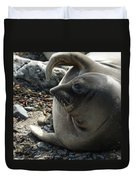Elephant Seal Duvet Cover