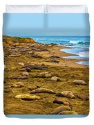 Elephant Seals Near Cambria  Duvet Cover
