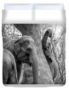 Elephant Tree Black And White  Duvet Cover