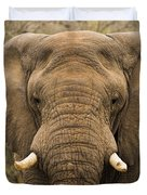 Elephant Watching Duvet Cover