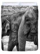 Elephants Bw Duvet Cover