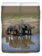 Elephants In The Mirror Duvet Cover