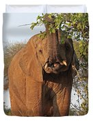 Elephant's Supper Time Duvet Cover