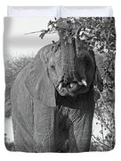 Elephant's Supper Time In Black And White Duvet Cover
