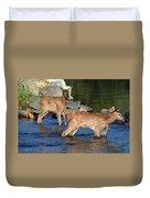 Elk Calf Crossing River 1 Duvet Cover