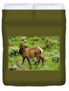 Elk Doe Duvet Cover