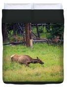 Elk In The Field Duvet Cover