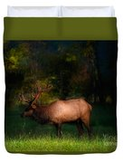 Elk In The Smokies. Duvet Cover by Itai Minovitz