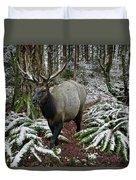 Elk In Winter Duvet Cover