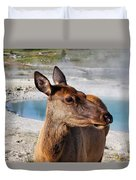 Elk In Yellowstone Duvet Cover