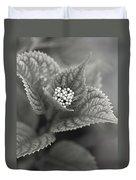 Emerging Hydrangea Duvet Cover