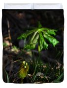 Emerging Mayapples Buffalo National River Duvet Cover