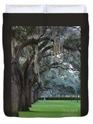 Emmet Park In Savannah Duvet Cover