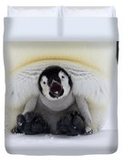Emperor Penguin Aptenodytes Forsteri Duvet Cover by Rob Reijnen