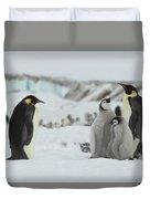 Emperor Penguin Landscape Duvet Cover