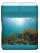 Enchanted Seas Duvet Cover