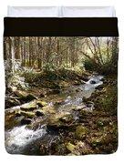 Enchanted Stream - October 2015 Duvet Cover