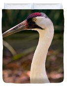 Endangered Species - Whooping Crane Duvet Cover