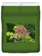 Epargyreus Clarus On Joe-pyed Weed Duvet Cover