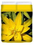 Euphorbia Wallichii Duvet Cover