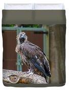Eurasian Black Vulture 1 Duvet Cover