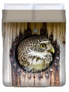 Eurasian Pygmy Owl In Profile Duvet Cover