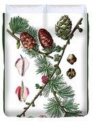 European Larch, Pinus Larix Duvet Cover