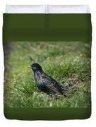 European Starling Duvet Cover