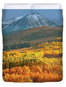 Evening Aspen Duvet Cover