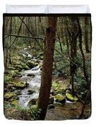 Evergreen Stream Ravine Duvet Cover
