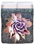 Exotic Succulent Plant - Pink Lilac Duvet Cover