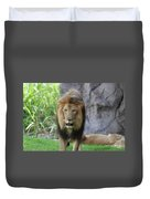 Expressive Male Lion Prowling Around In Nature Duvet Cover