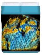 Exquisite Luminescence Duvet Cover