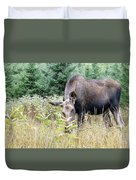 Eye-contact With The Moose Duvet Cover