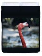 Eye Of The Flamingo Duvet Cover